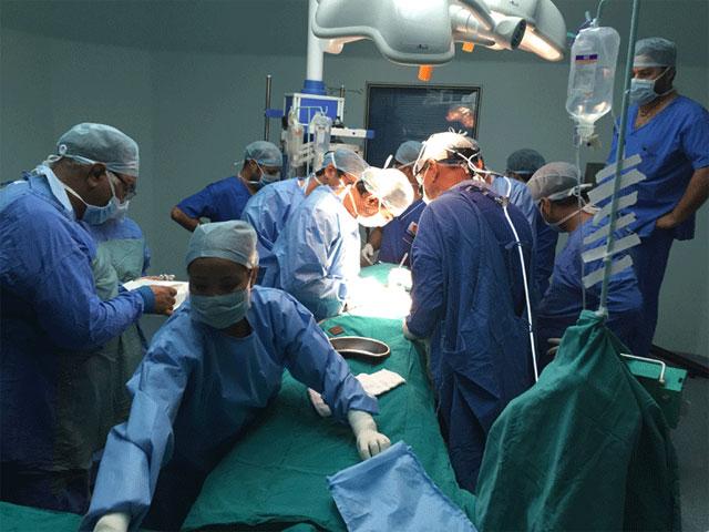 orthopedic surgeon neurologist and plastic surgeon essay
